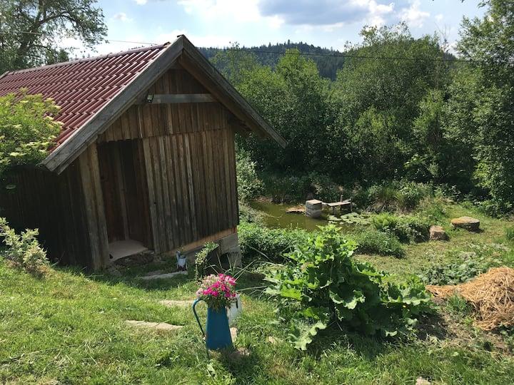Élégante petite cabane / chambrée