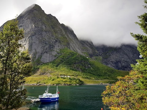 Jaukūs Fjordo namai Reino širdyje