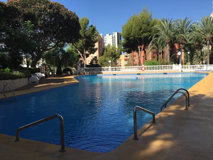 Apartment Benidorm Pool Garten