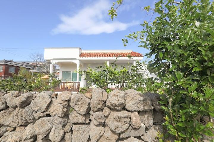 넓은 잔디마당 독채 전원주택  - 제주스테이모어 (대지 180평)