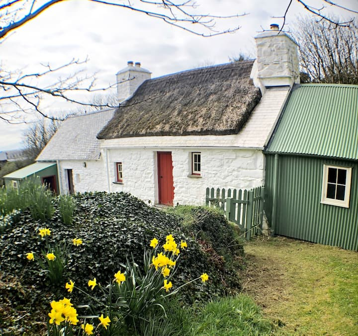 Thatched Coastal Cottage near St Davids