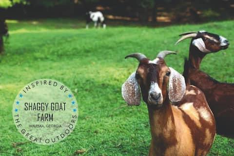 The Shaggy Goat Farm:  R & R  or Learn & Dream