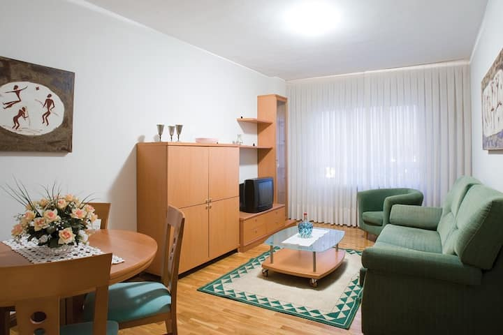 Apartamentos La Aurora-Hospital San Pedro-CIBIR 1D