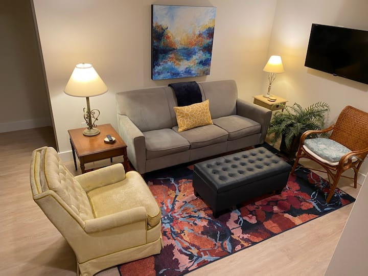 The Blue Guest Suite/*NEW*LowerLevel/Great Locale