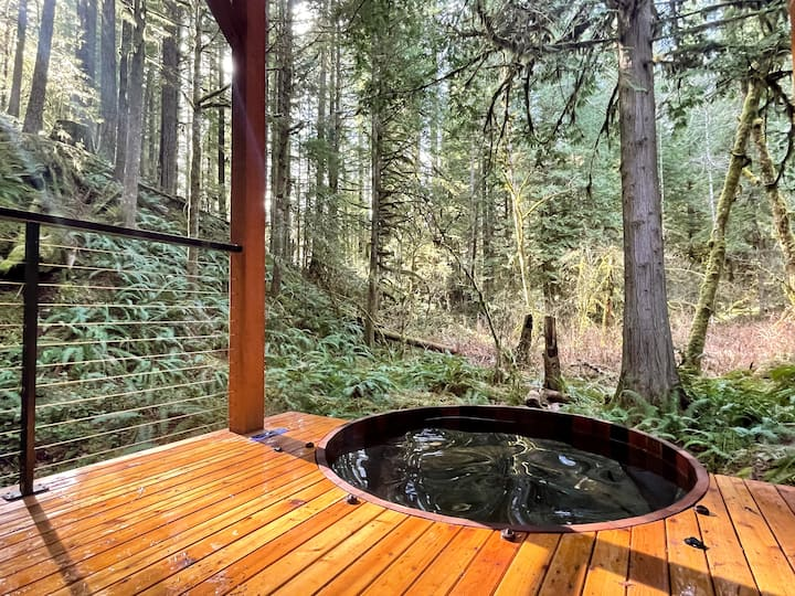 Mt Baker Cabin w/ Hot Tub & Panoramic Forest Views