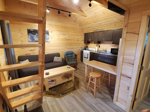 Gorgeous modern 1-bedroom cabin with a loft