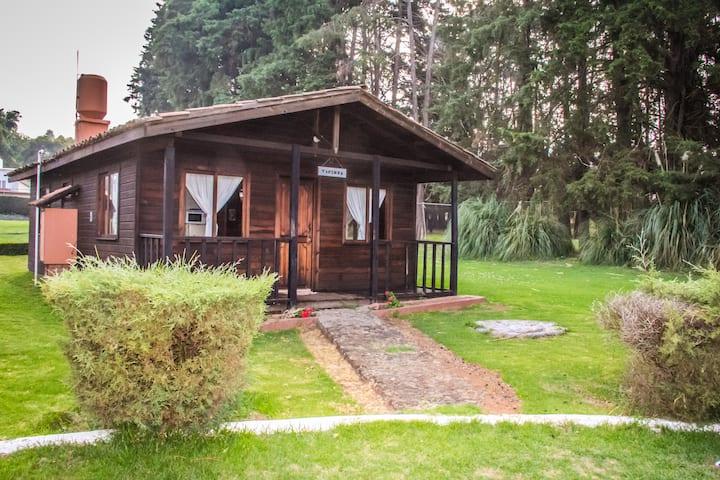 """Zirahuén Forest & Resort """"Standard Zirahuén"""""""