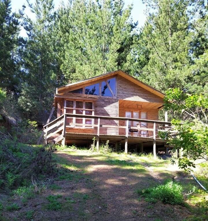 Cabaña de Montaña en el Lago Vichuquén