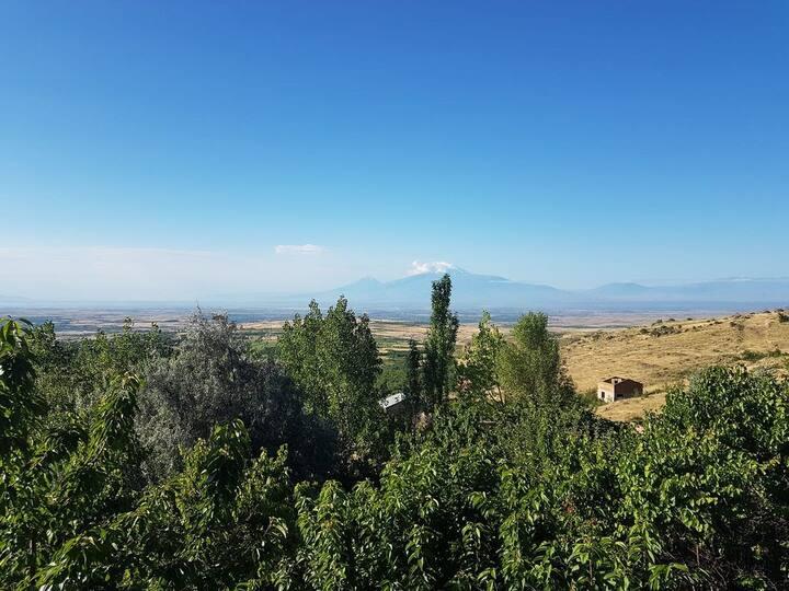 Дача с прекрасным видом на г. Арарат.