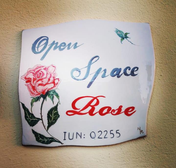 Open Space Rose with terraces- Sardegna- Iglesias