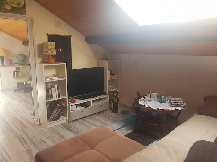 Petit appartement  cocon en sous pente