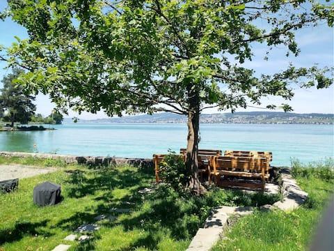 بودلي- هاوس مباشرة على بحيرة زيورخ