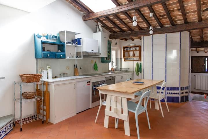 Cheerful 3 Bedrooms Flat In Piazza Santo Spirito