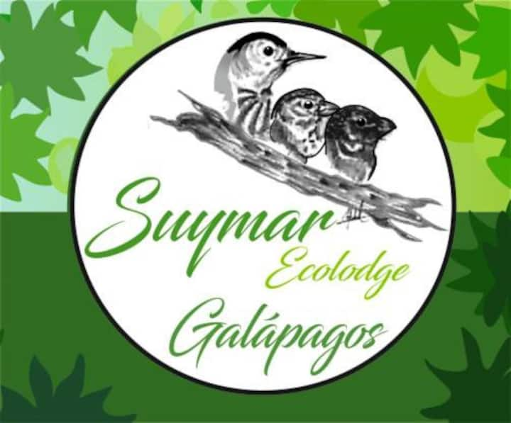 "Galápagos SUYMARecolodge ""Shark Suite"""
