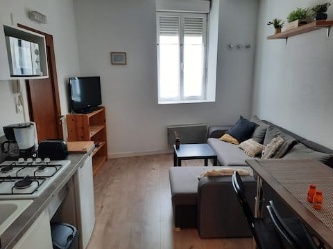Appartement centre ville Oyonnax, quartier calme