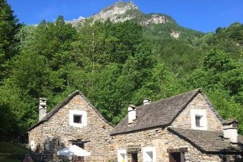 Alkuperäinen Ticino Rustici leikkikentällä ja metsässä