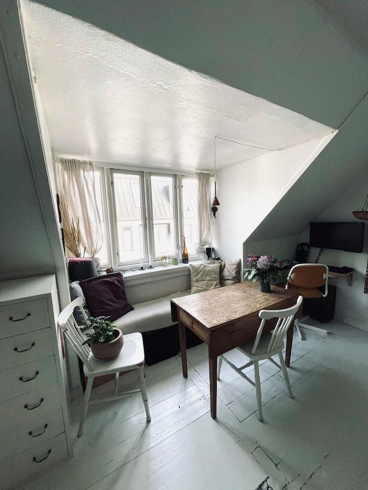 Autentisk Pusterum i Latinerkvarteret, Aarhus C