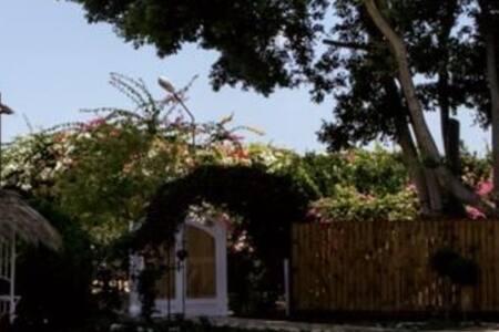 main property door & villa door are both more than 81cm wide.