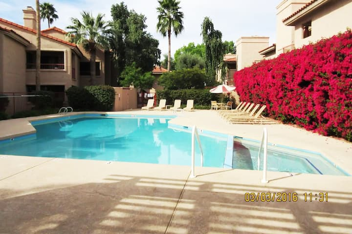 Scottsdale One Bedroom Condo - Discounted