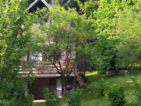Chata Na Poskle u lesa s výhledem- Hutisko-Solanec