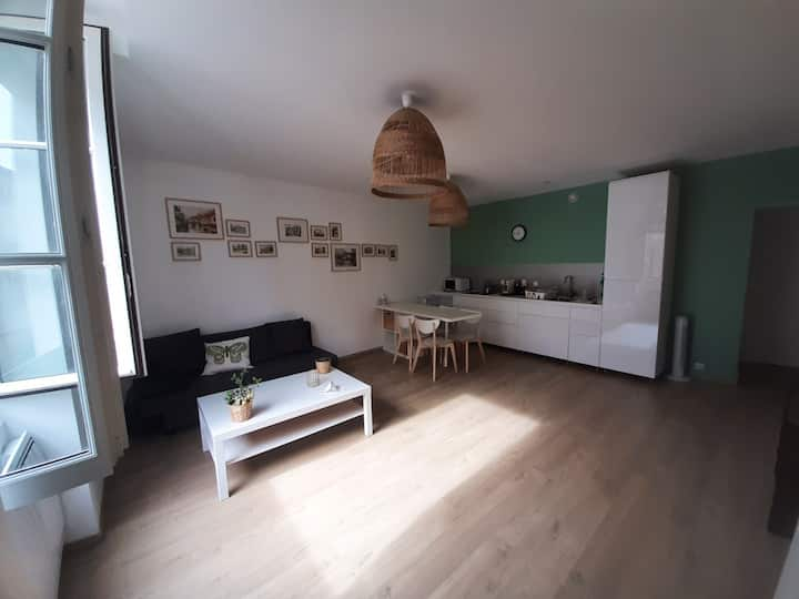 Flat in the full city center of Vienne (France)