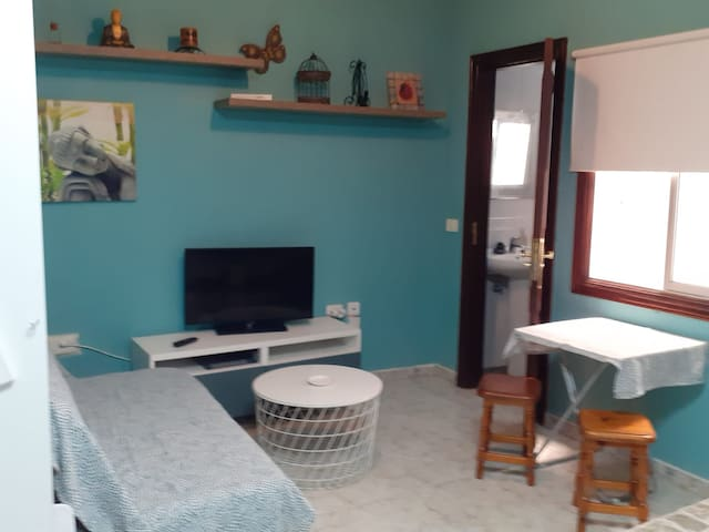 salon  TV . sofa cama doble y mesa