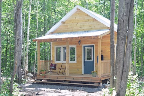 NEW!  Cabin nature escape, pond, wifi, sleeps 4