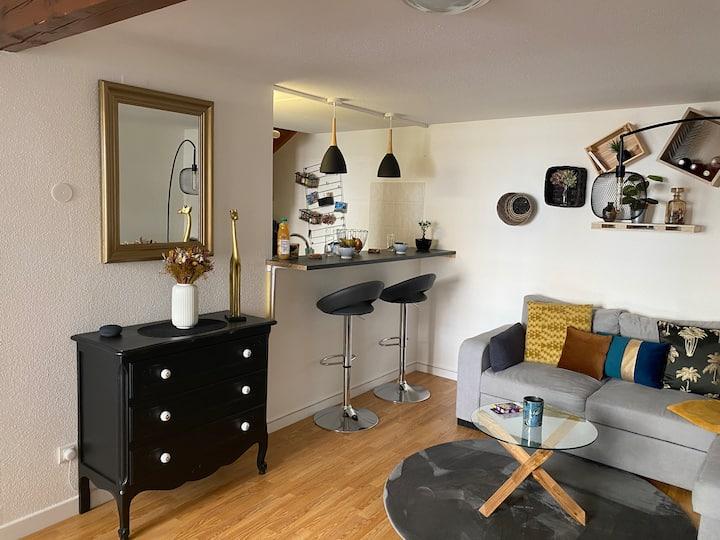 Bel appartement de 40m2 au coeur de Strasbourg