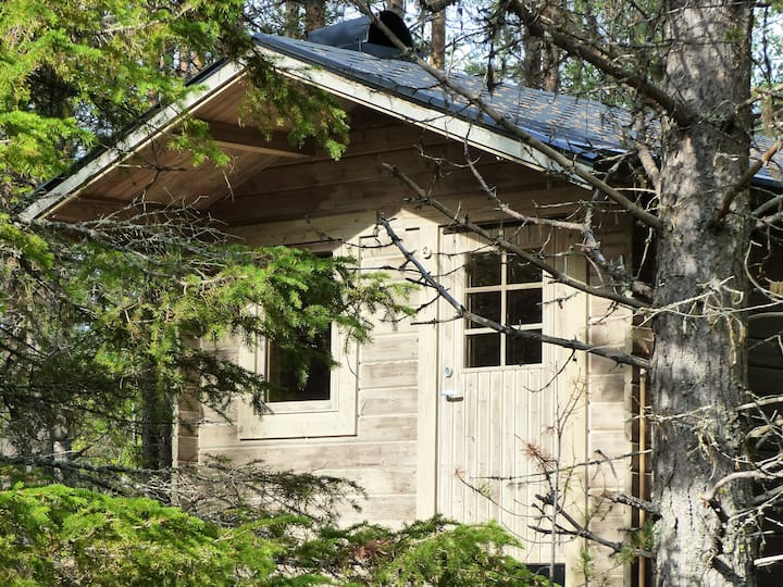 Wooden cabin in the boreal forest