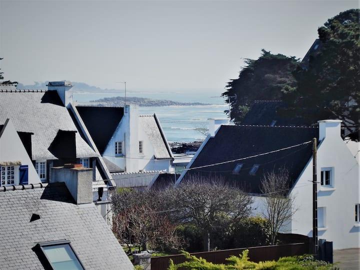 Bel appartement 2 pers vue mer et plages à pied