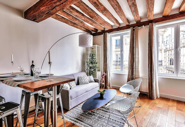 Notre-Dame, stunning apartment  (367)
