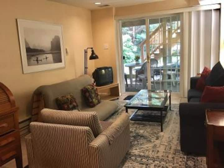 Sunny English Basement Apartment with Patio