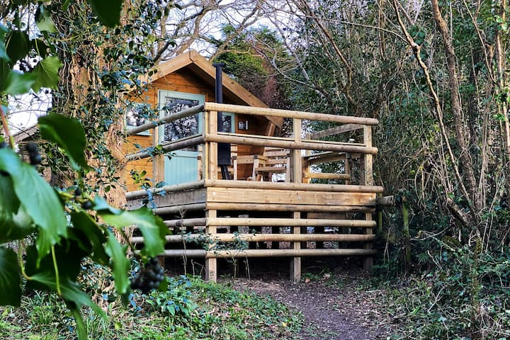Lifton Ark - Dorset Woodland Retreats