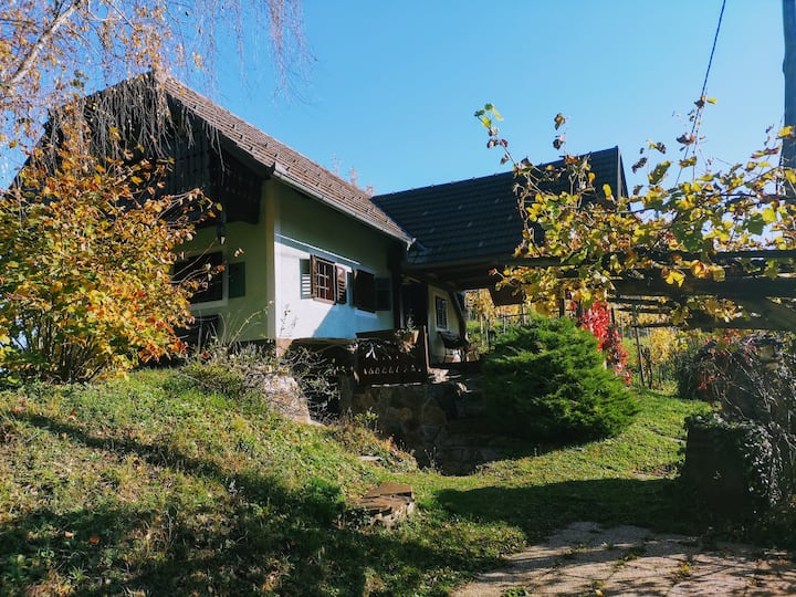 Lovely cottage surrounded by vineyards