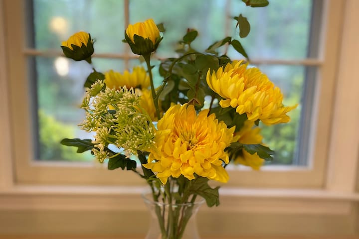 A little touch of yellow can really brighten the day, wouldn't you agree?  We get a lot of rain in North Carolina. The forests and flowers can attest to that!  We felt it was important to bring that sense of growth and life into each room!