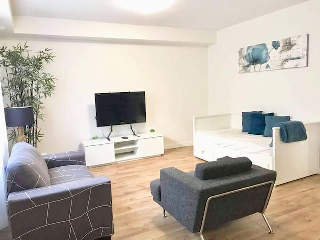 Living Room w/ sofa bed option