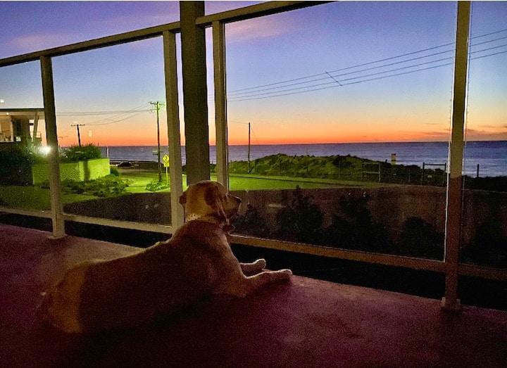 $Million Views:Ocean View Beach House/Pet friendly