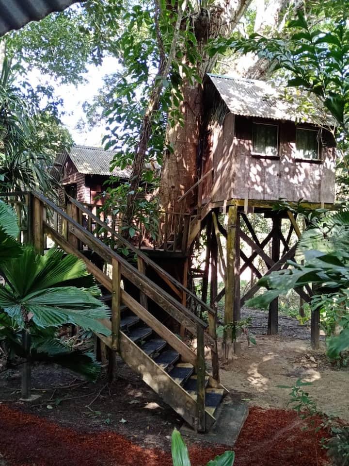 River/Garden/Treehouse Duplex (Gold Standard)