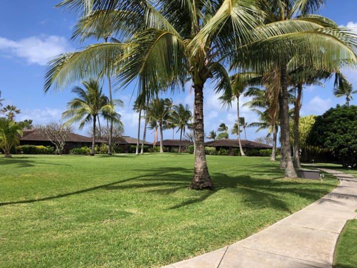 Serene Hawaiian Style Cottage
