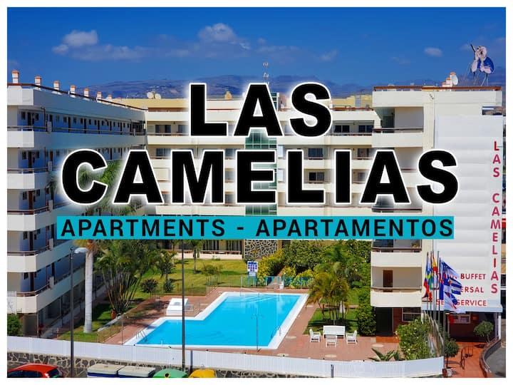LAS CAMELIAS APARTAMENTOS (C15) -PLAYA DEL INGLES