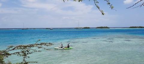 Strea di lama nära stranden och Aruba centrum