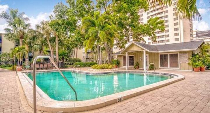 South Tampa Prime Location Walk Everywhere!