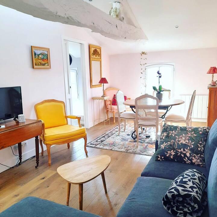 """Suite-Appartement """"Hôtel particulier de Larade"""""""