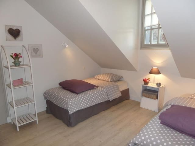 Chambre avec 2 lits 1 place