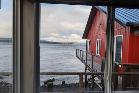 SeaClusion. A stunning guest house over the water.