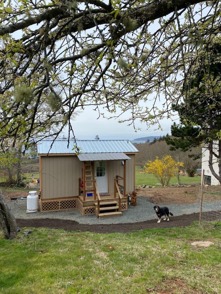 Spanking brand new Tiny Cabin