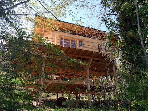 Wood and straw house on stilts.