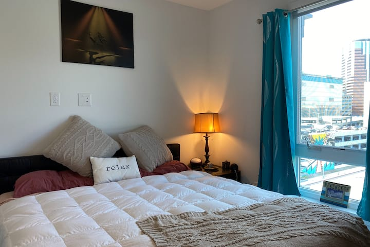Fantastic downtown suite near harbor and the beach
