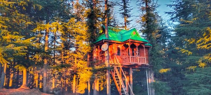 Tree House   Into the Wild   Solitude