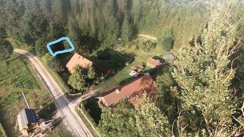 AngloJelonek domek w lesie.